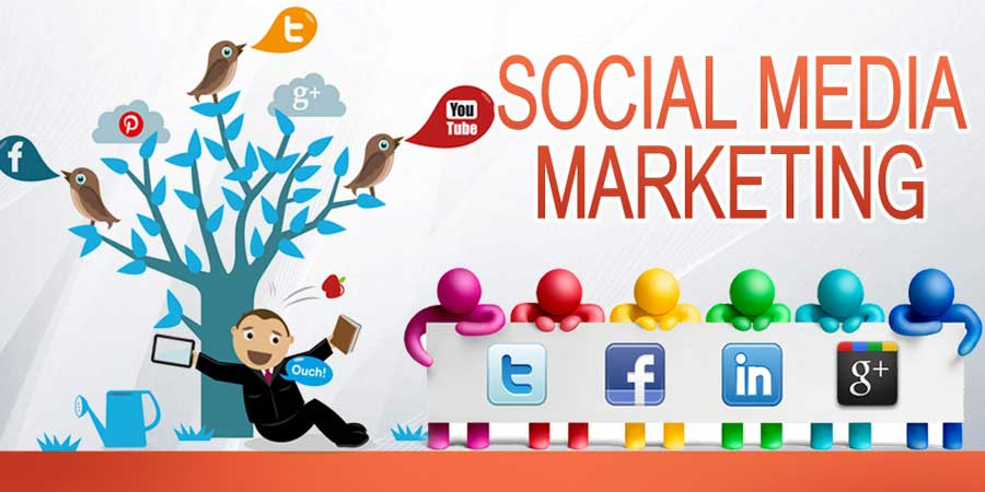 Social Media Marketing Company in Madhapur